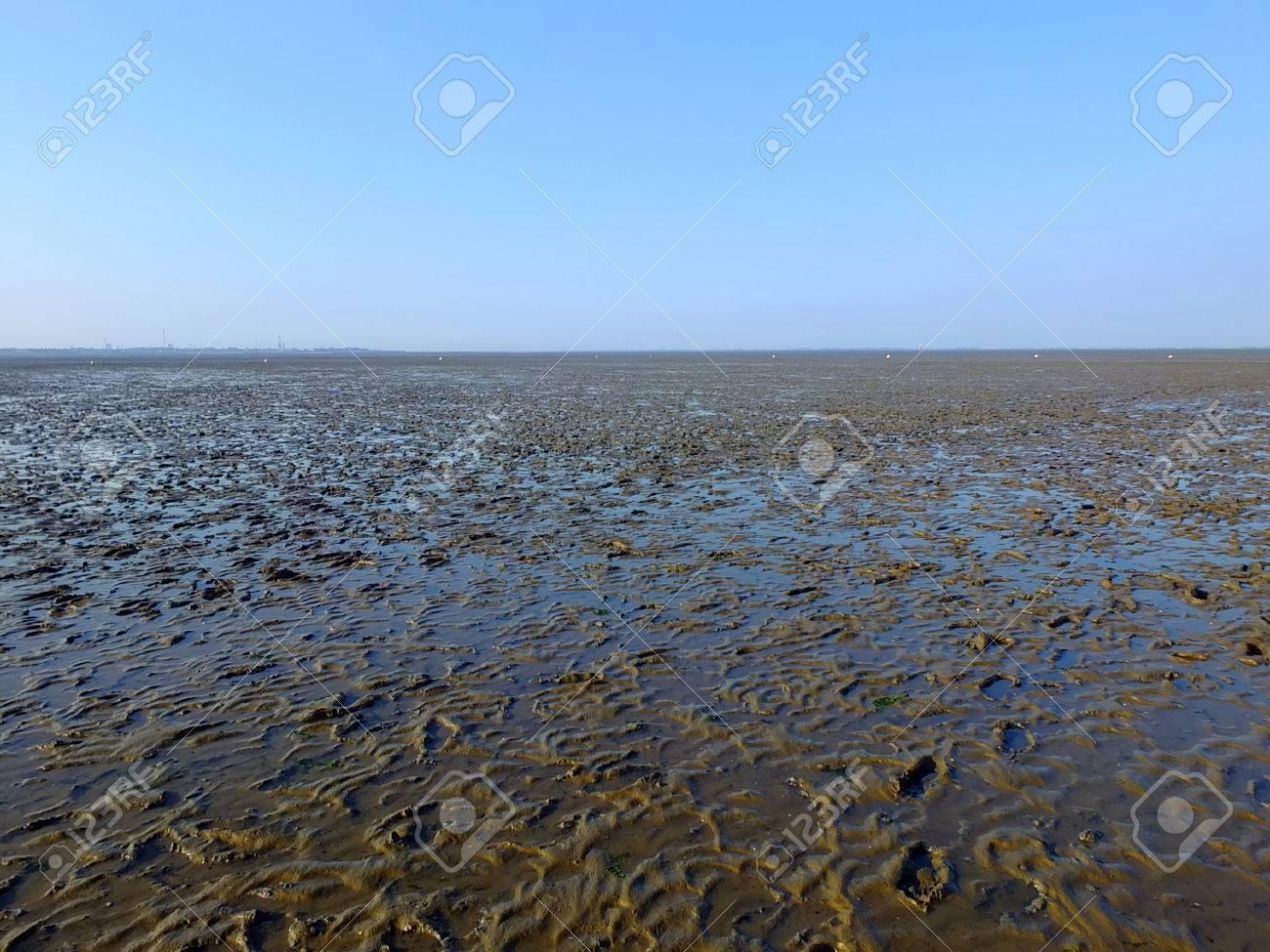 The Wadden Sea in northern Germany Standard-Bild - 47746219