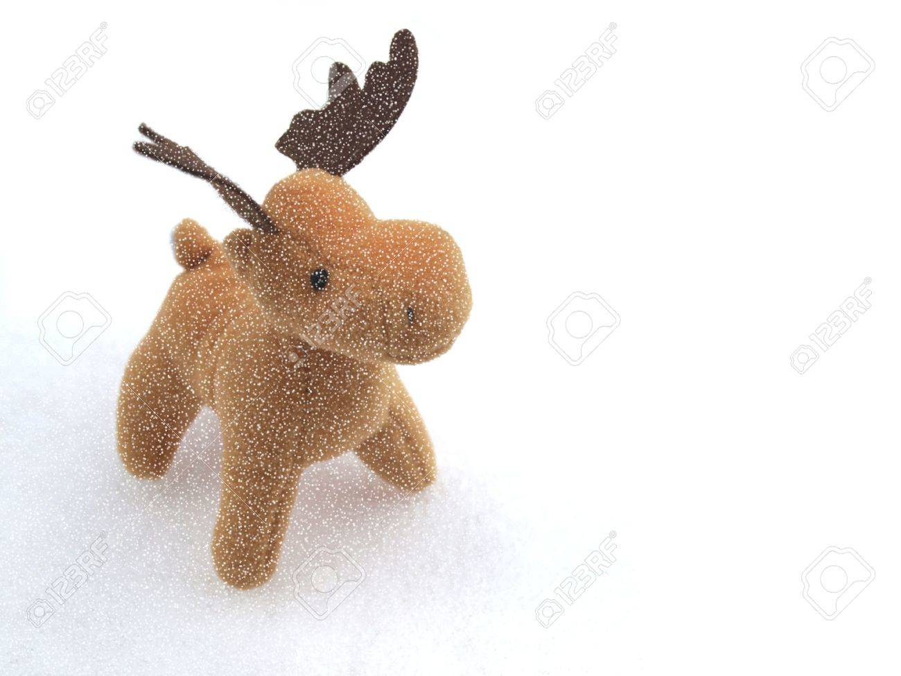 High key picture of Christmas moose deer in snow Stock Photo - 6027803