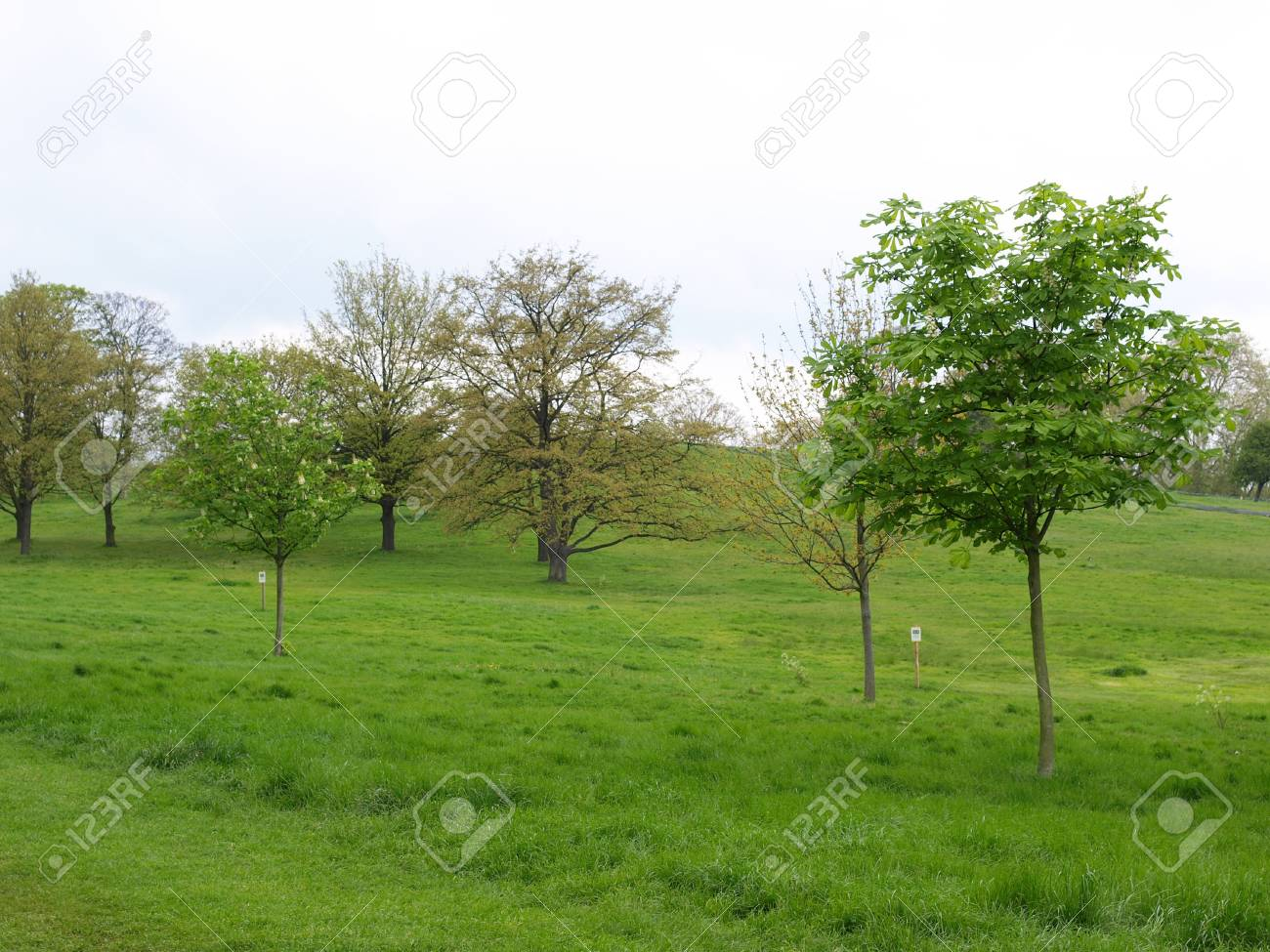 Primrose Hill park in London, England, UK Stock Photo - 7324125