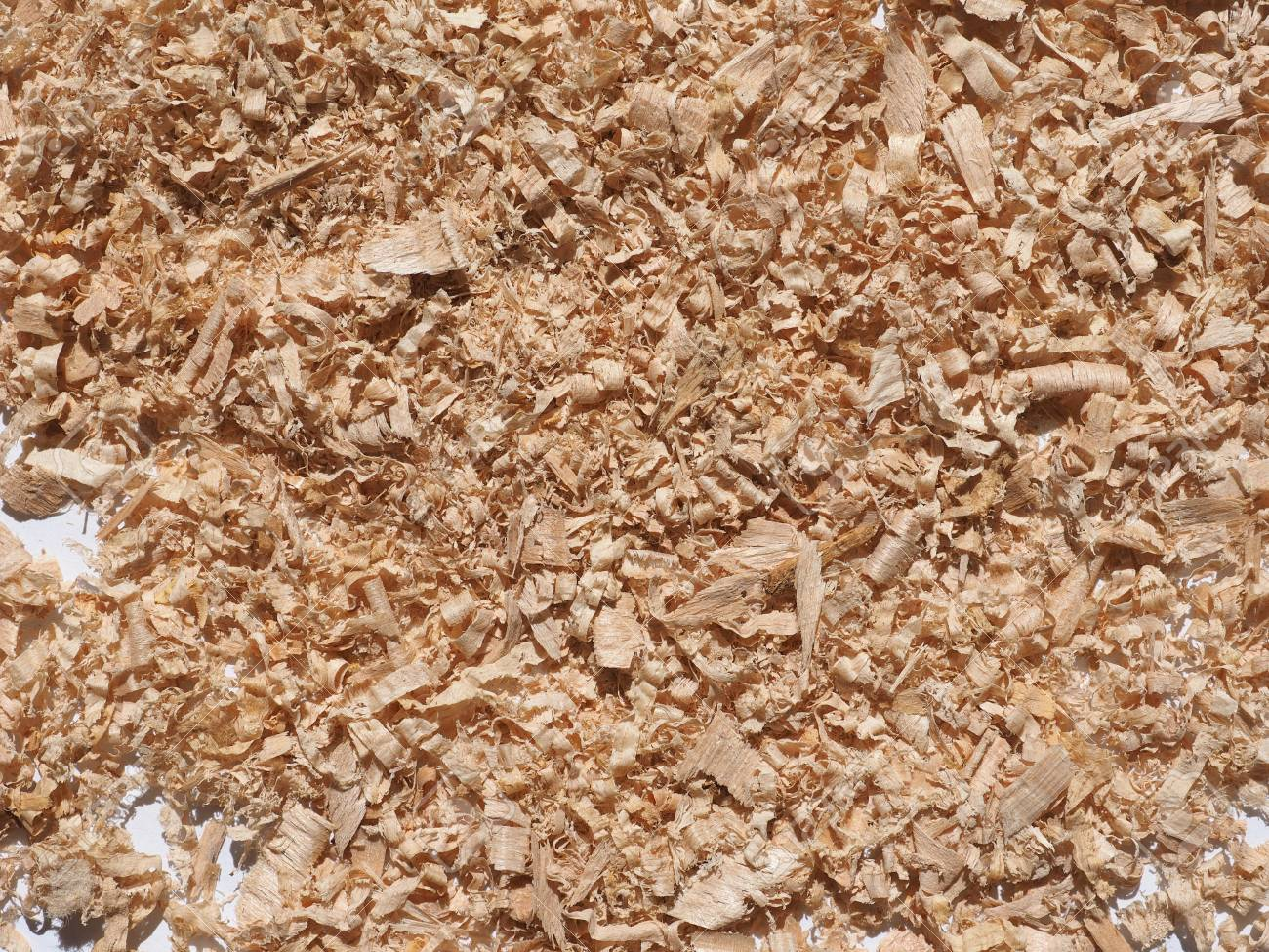 Sawdust Wood Dust Byproduct Or Waste Product Of Woodworking Operations..  Stock Photo, Picture And Royalty Free Image. Image 107780112.