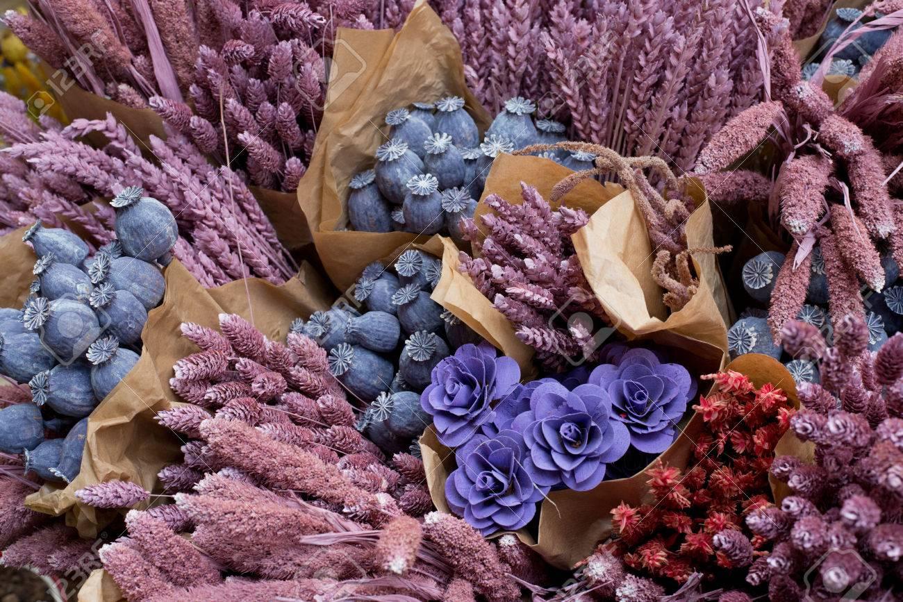 foto de archivo ramos de flores de colores de las flores secas