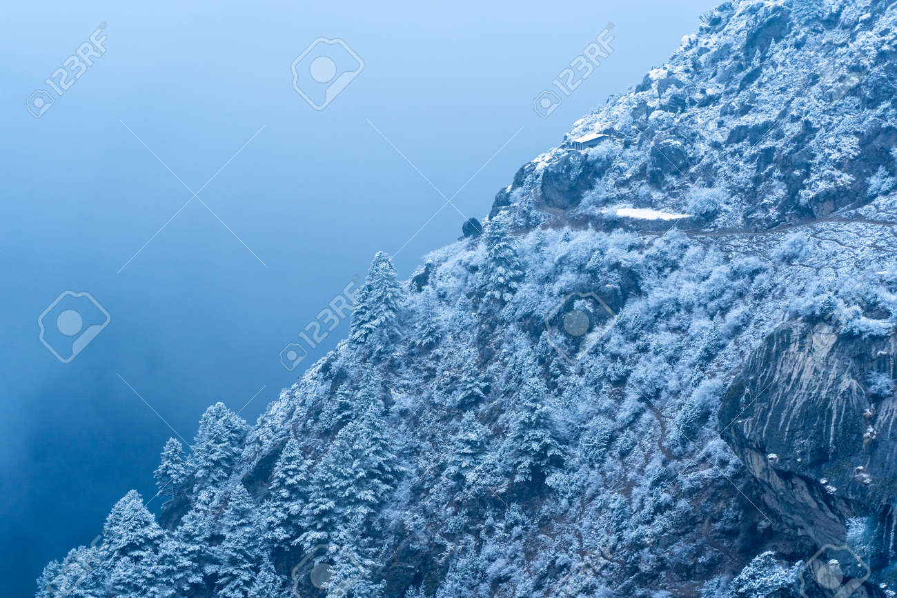A hillside of trees and rocks covered in snow on a winters evening. - 169836060