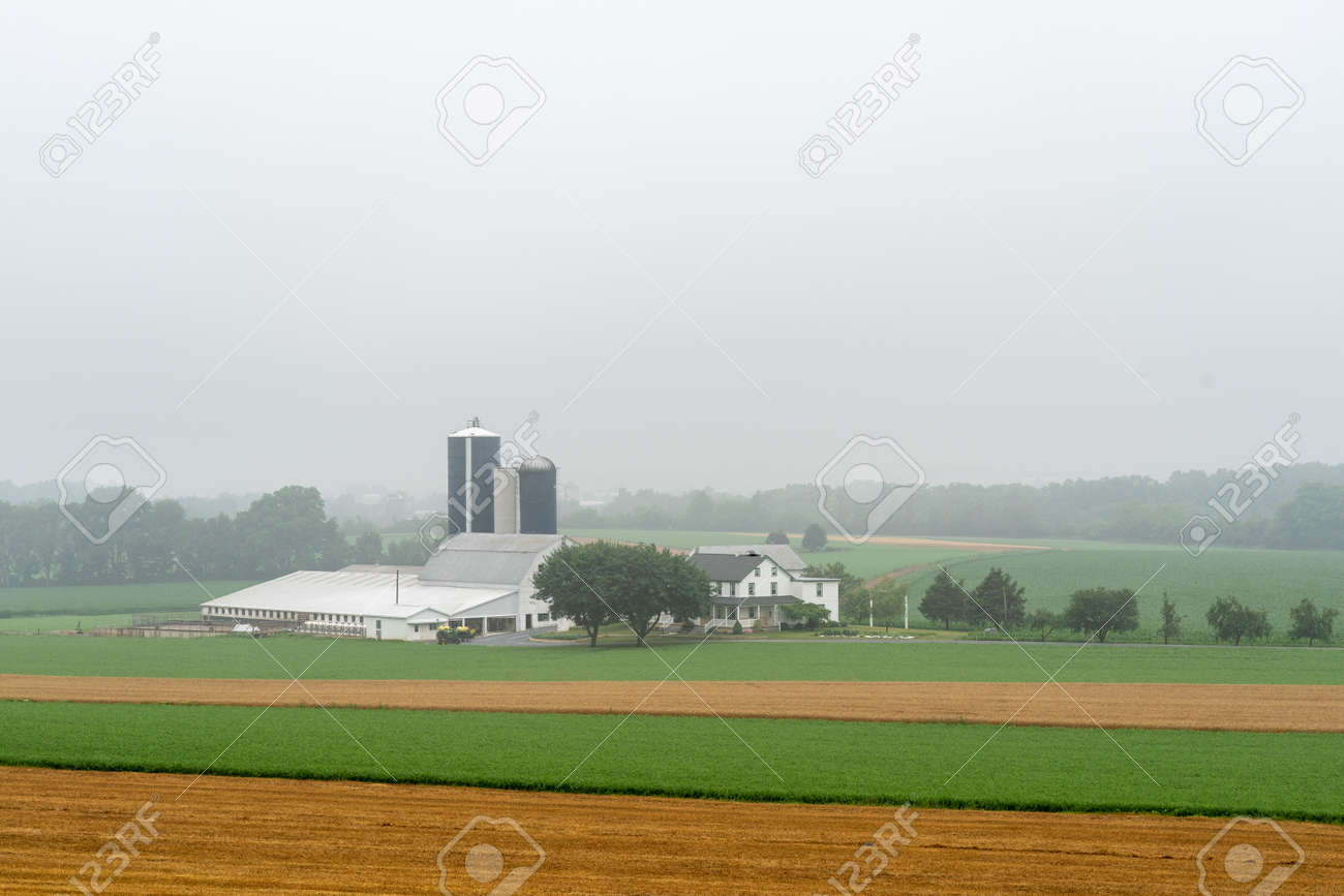 A farm in a valley surrounded by fields on a foggy morning. - 171189675