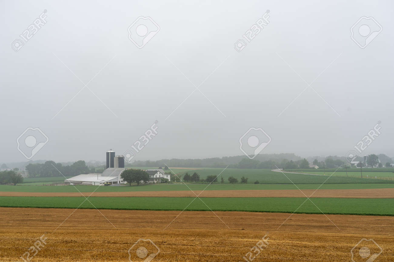 A farm in a valley surrounded by fields on a foggy morning. - 171189958