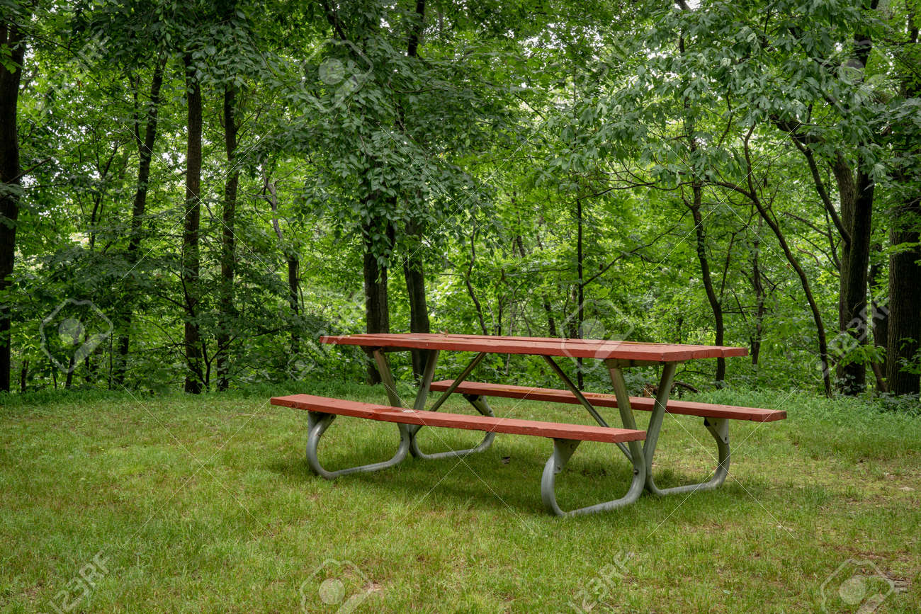 A red picnic table in the forest in the summer. - 171189645