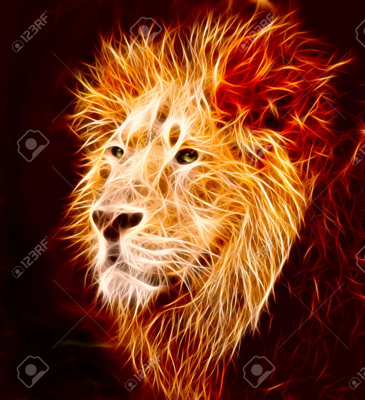 A big male Asiatic lion with lapping flames - 5067201