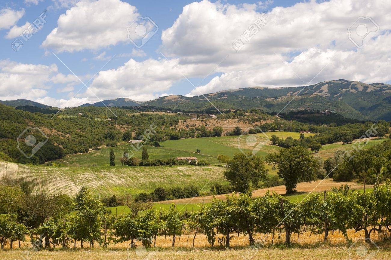Landscape between Lazio and Umbria at summer Stock Photo - 10574651