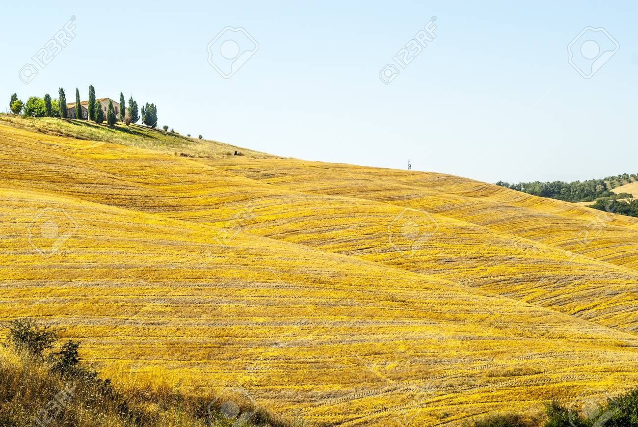Crete senesi, characteristic landscape in Val d'Orcia (Siena, Tuscany, Italy) along the road from Asciano to Torre a Castello Stock Photo - 19141404