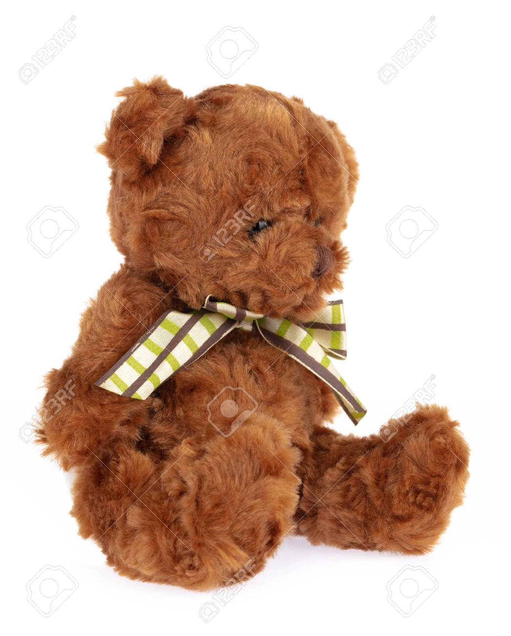 teddy bear doll isolated on white background. - 143487010