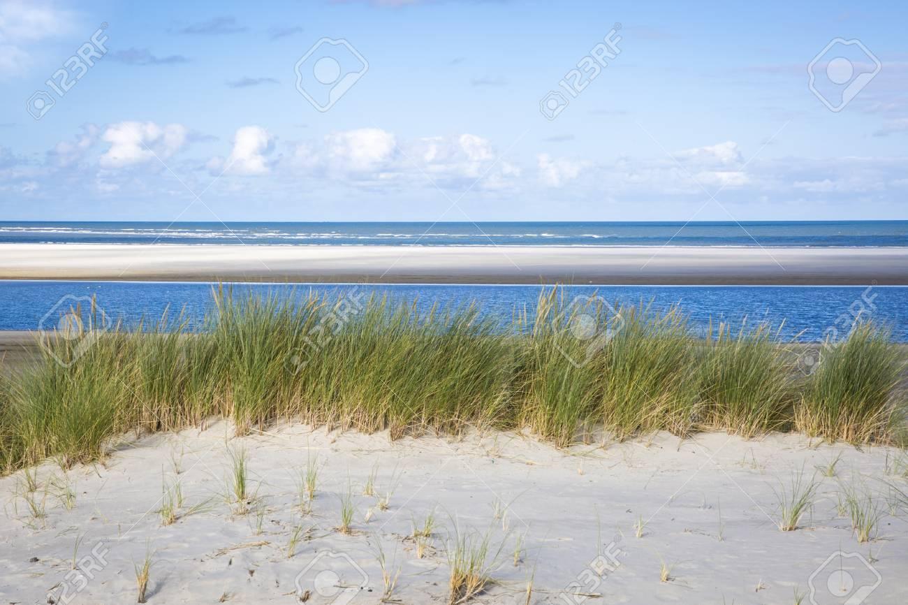 芝生とビーチ、アーメラント島、...