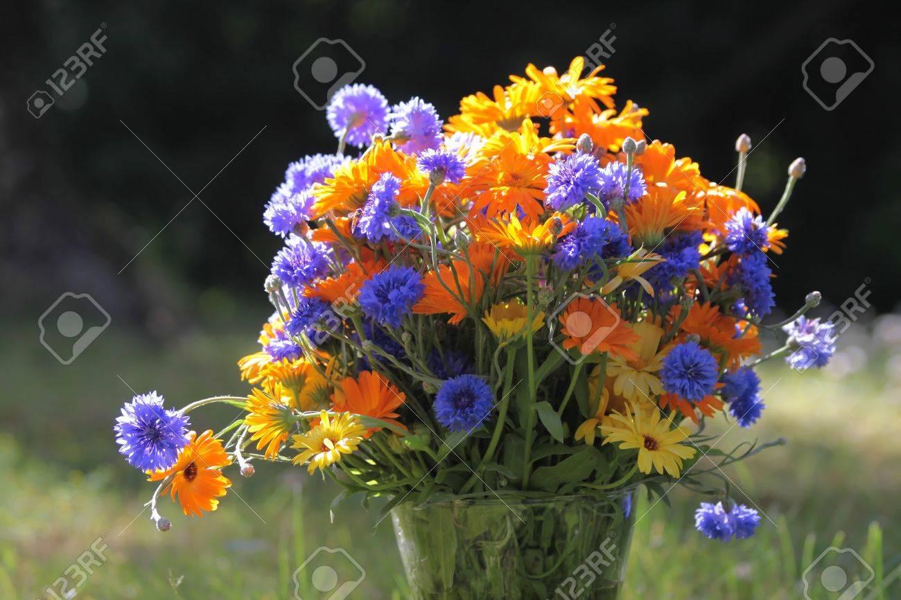 Bouquet Di Fiori Colorati In Un Prato Di Estate Foto Royalty Free ...