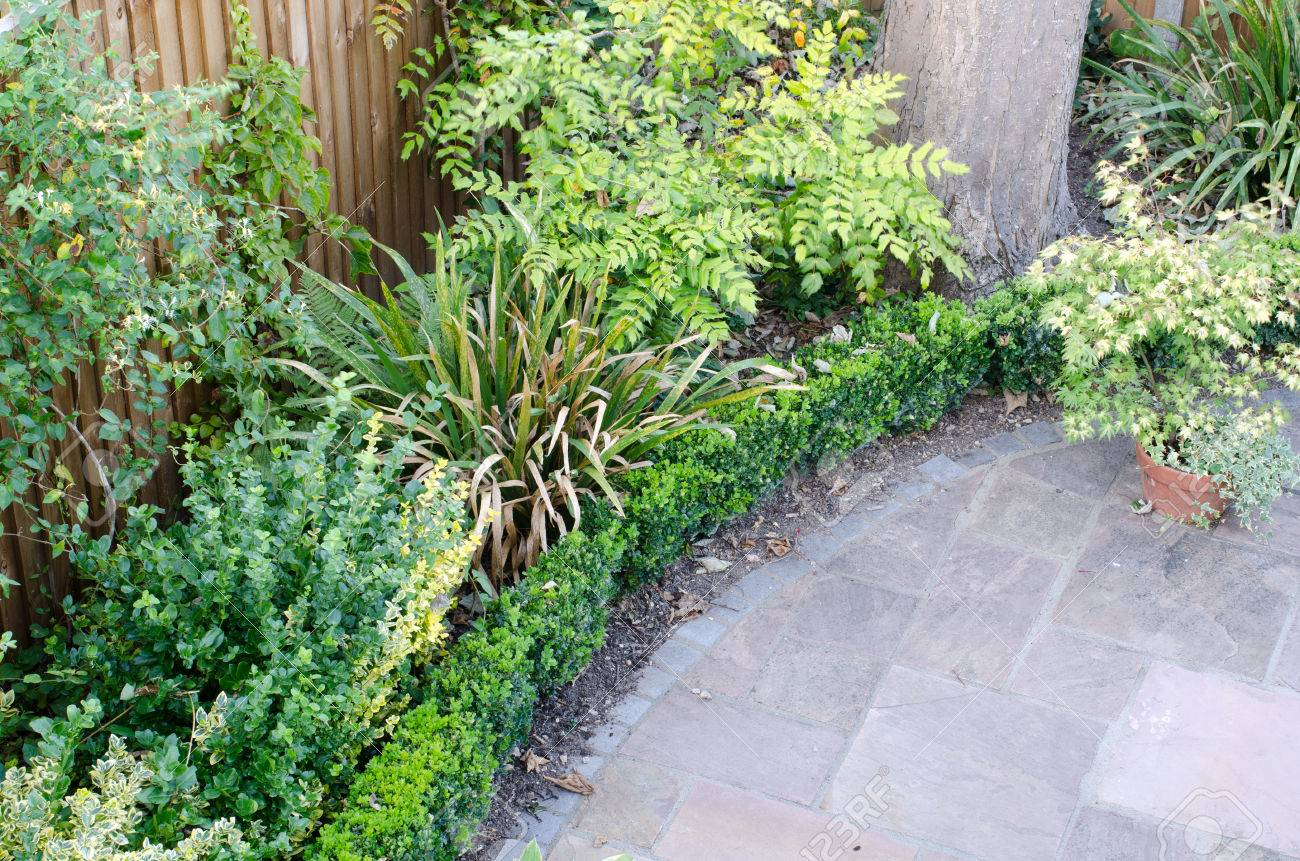 Edge Of Circular Patio From Above With Box Hedge And Bushes Stock Photo    64432821
