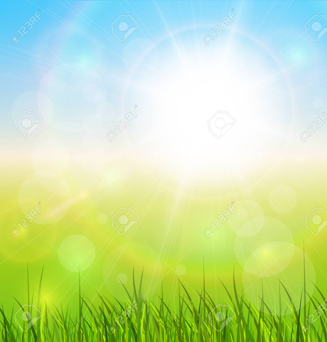 Spring natural sunny background with vector sun and grass. Stock Vector - 25996657