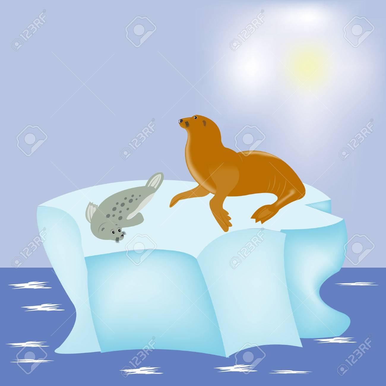Sea animals seal on block of ice in north sea Stock Vector - 8596451