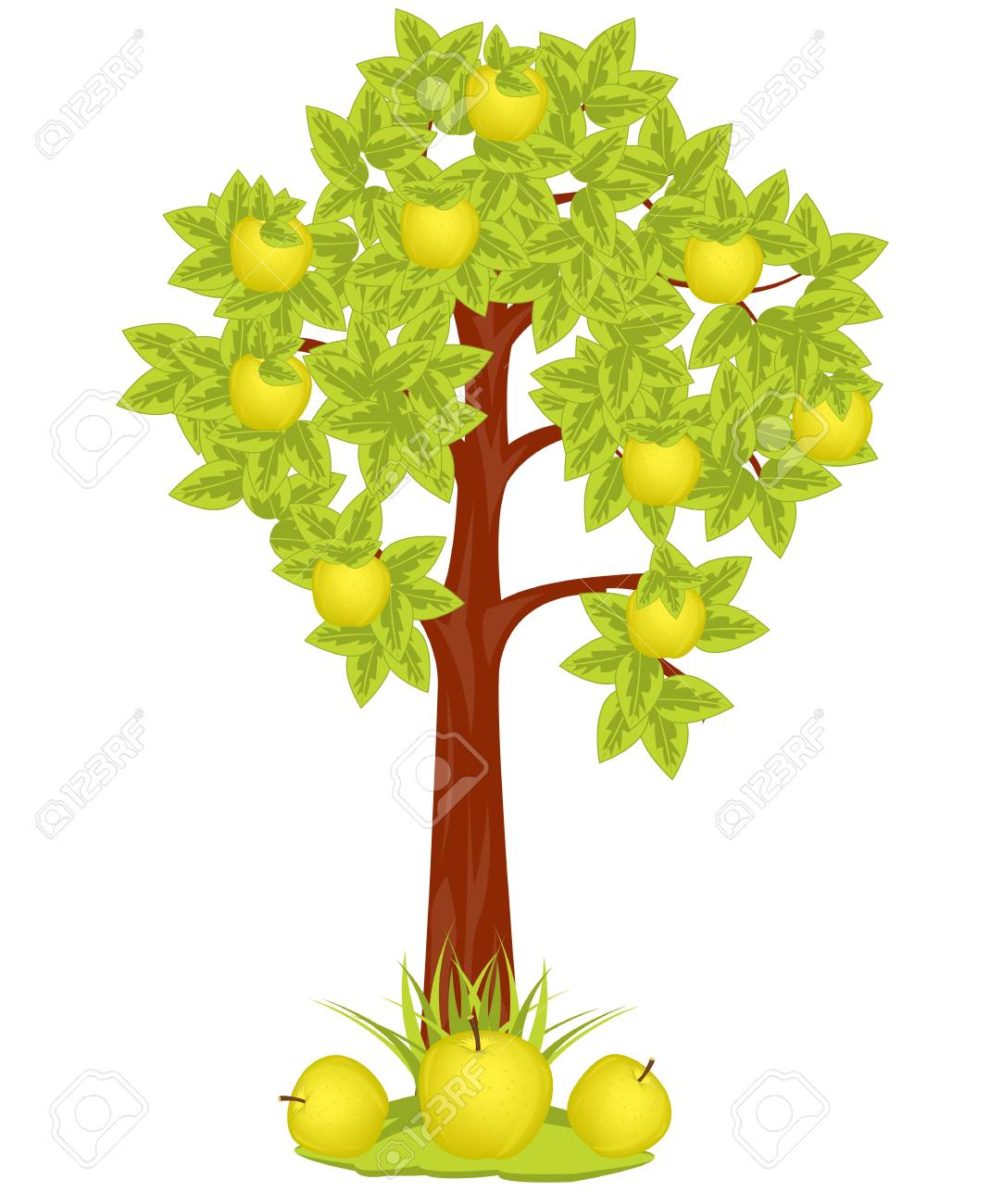 Apple Tree on white background is insulated Stock Vector - 16793167