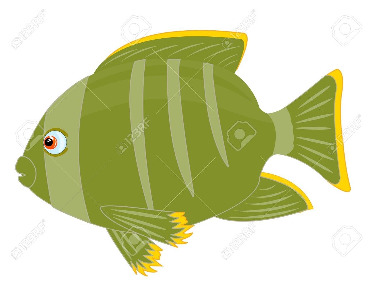 Illustration of tropical fish insulated on white background Stock Vector - 17010206