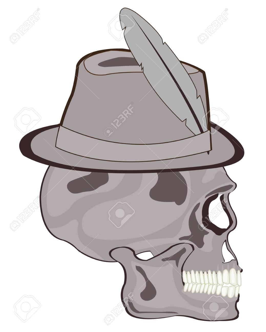 Increíble Anatomía De Un Sombrero Componente - Anatomía de Las ...