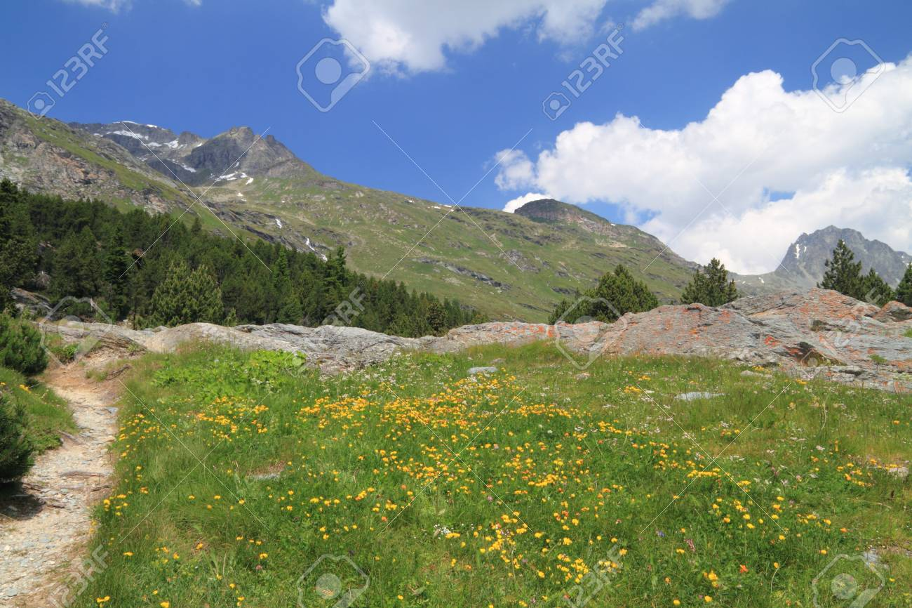 Trekking in Engadina (Swiss) Stock Photo - 10194641