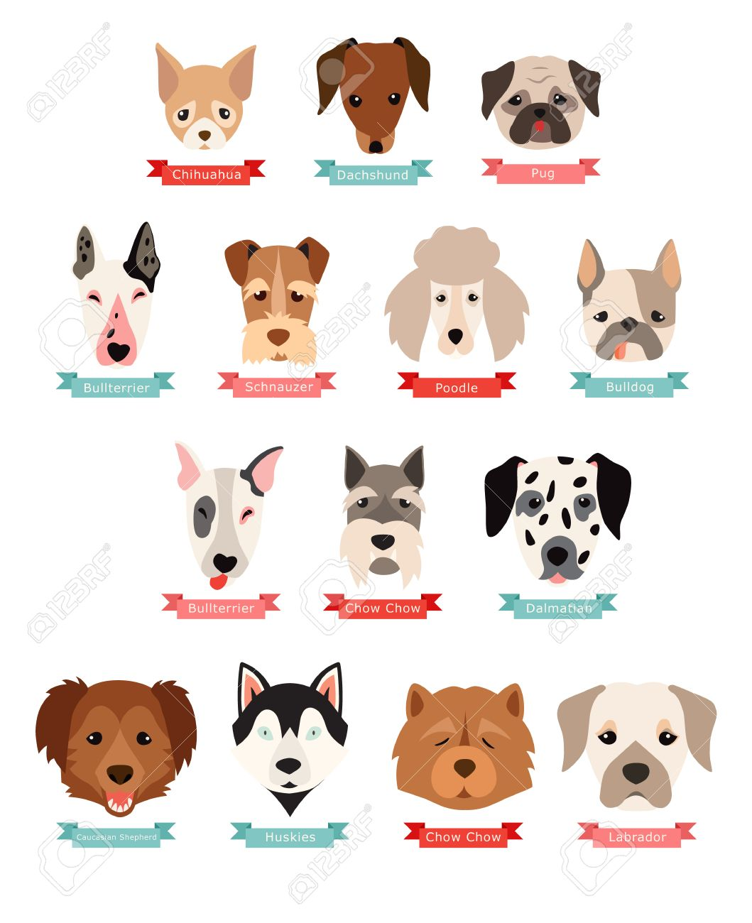 Dog Breeds Collection With Ribbon And Name Vector Flat Illustrations Royalty Free Cliparts Vectors And Stock Illustration Image 65979798