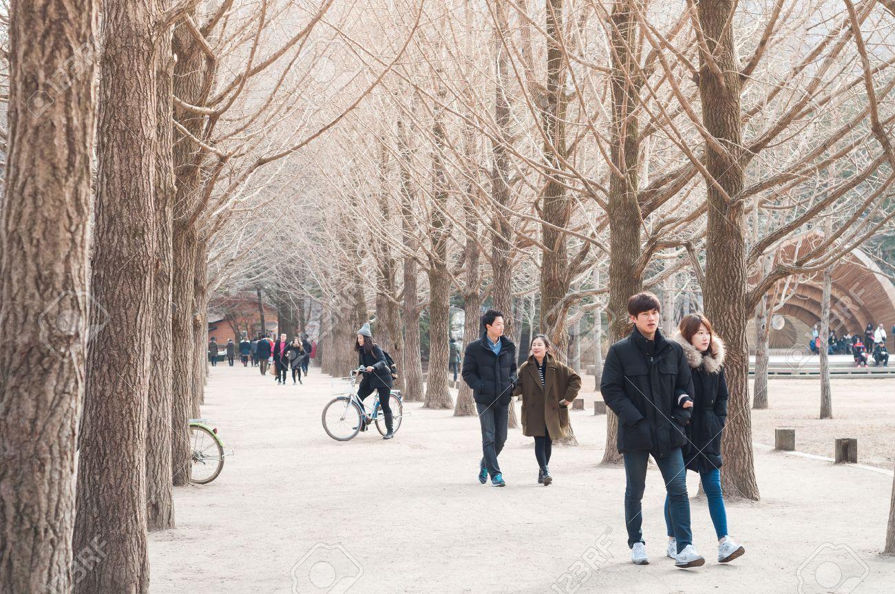 CHUNCHEON, SOUTH KOREA - OCT 07, 2014: Tourists enjoy one of the many tree-lined trails of Nami Island (Namiseom), where the popular Korean drama Winter Sonata was filmed. - 37757887