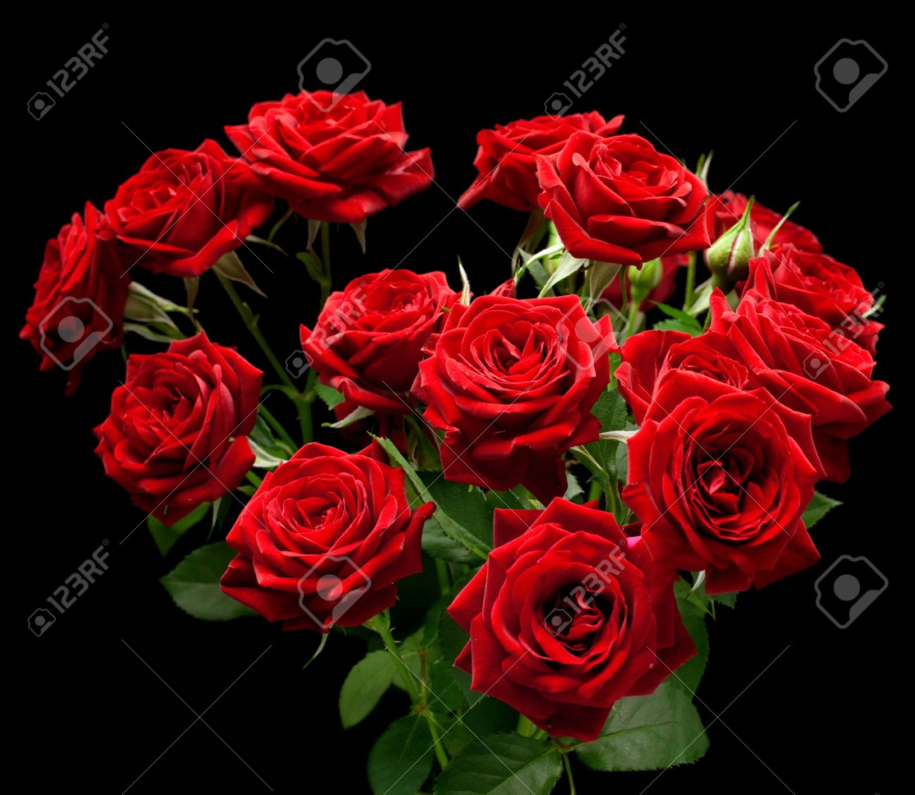 https://previews.123rf.com/images/coffeemill/coffeemill1304/coffeemill130400021/18943787-bouquet-of-red-small-roses-on-a-black-background-.jpg