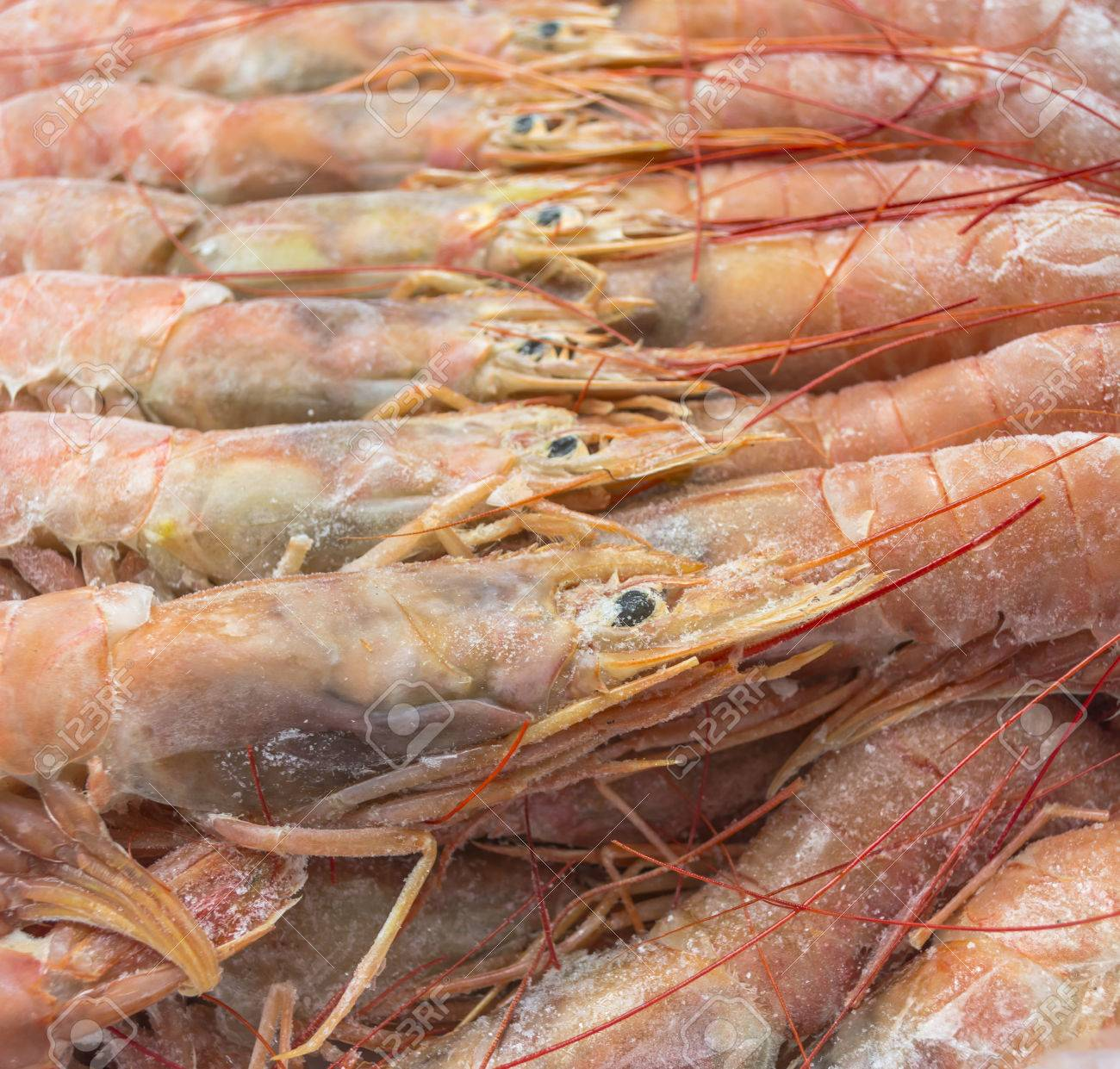Close Up Of Raw Frozen Argentina Red Shrimps Stock Photo Picture