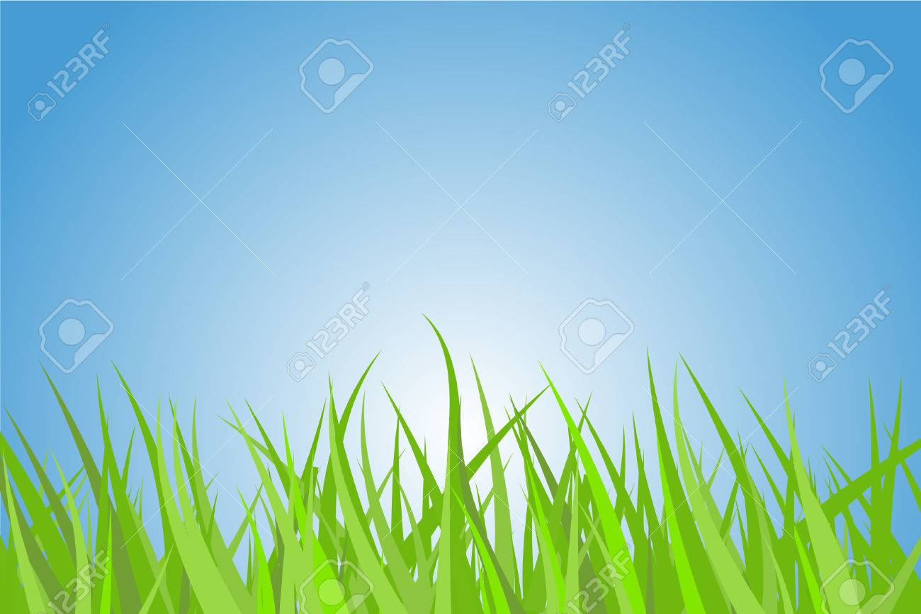 Illustration of a green grass with nice blue sky and rising sun. Stock Vector - 2874502