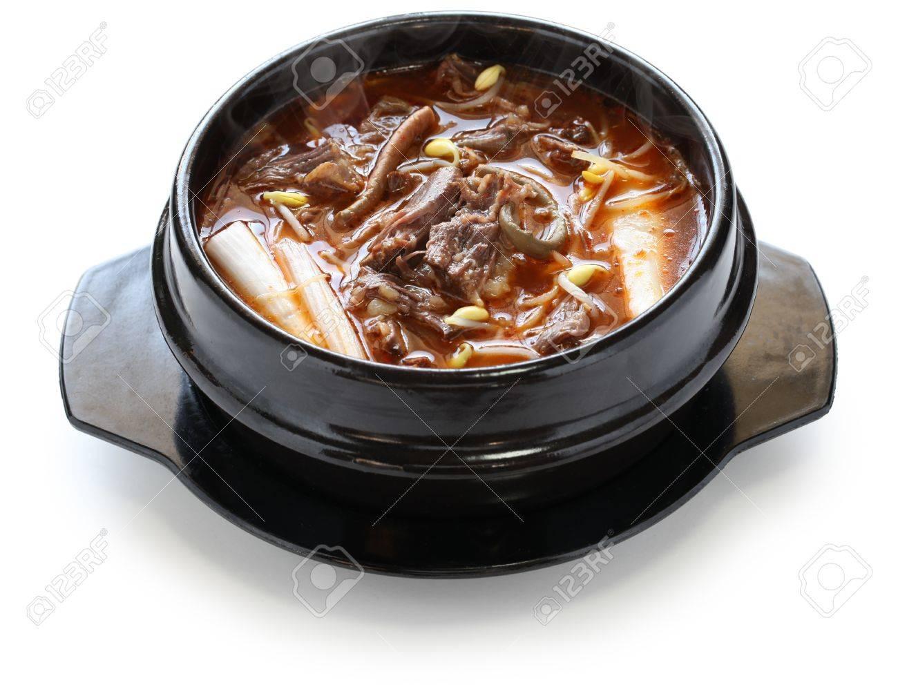 yukgaejang, spicy beef and vegetable soup, korean food Stock Photo - 17504820