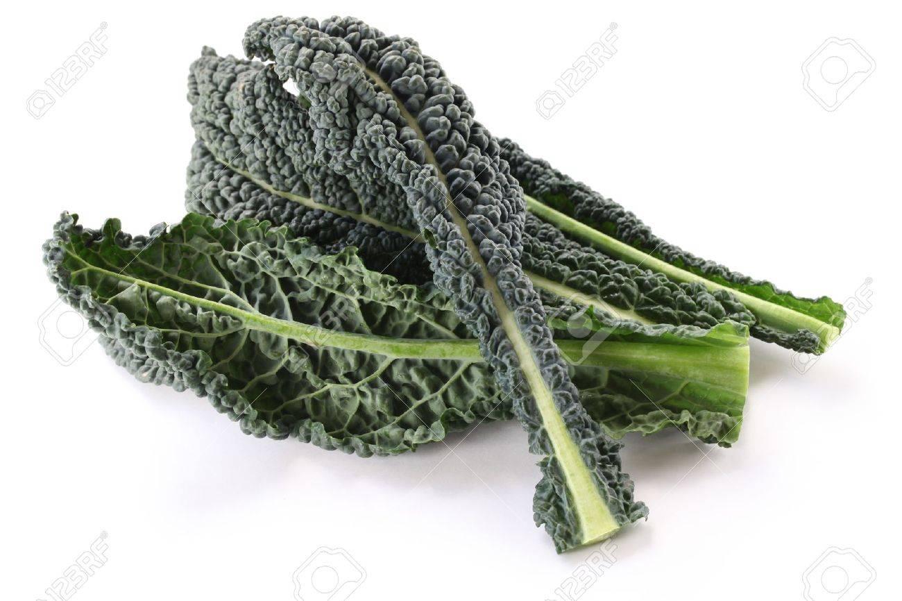 black kale, italian kale - 18933232