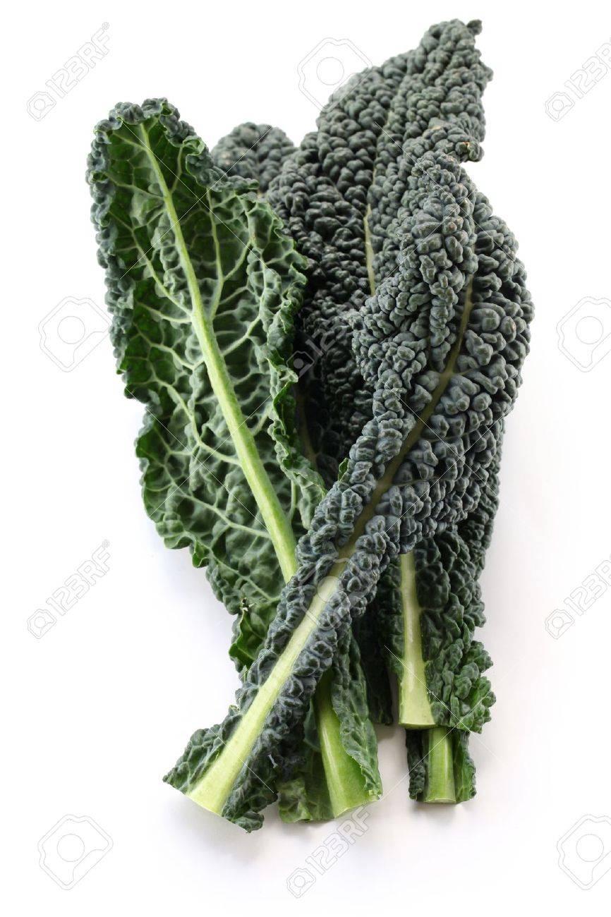 black kale, italian kale - 18933233