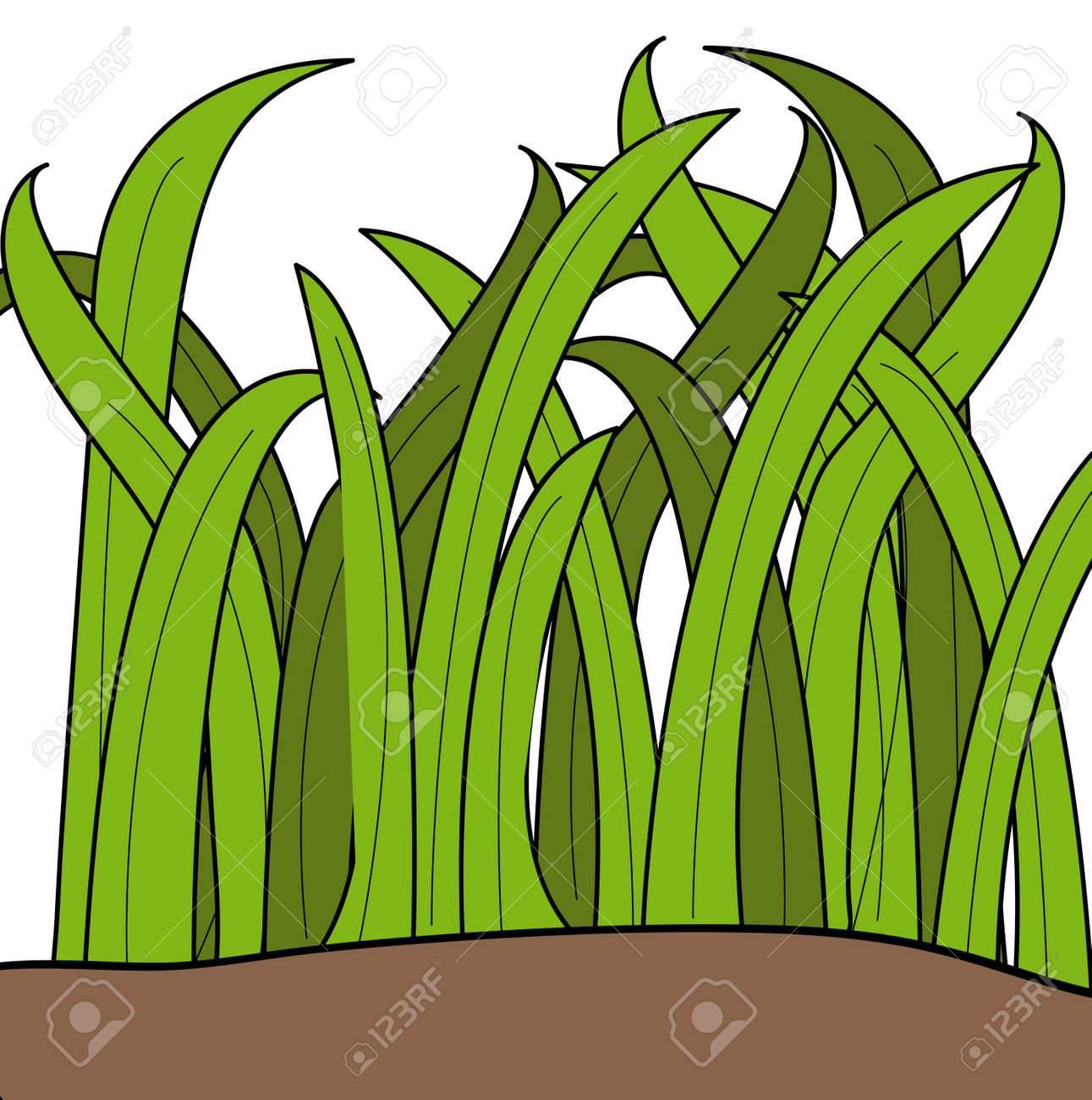 dibujos animados dibujo de hojas de la hierba verde - vector Foto de archivo - 2733648