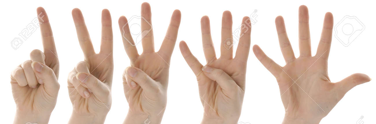 counting hands from one to five on white background Stock Photo - 6416400