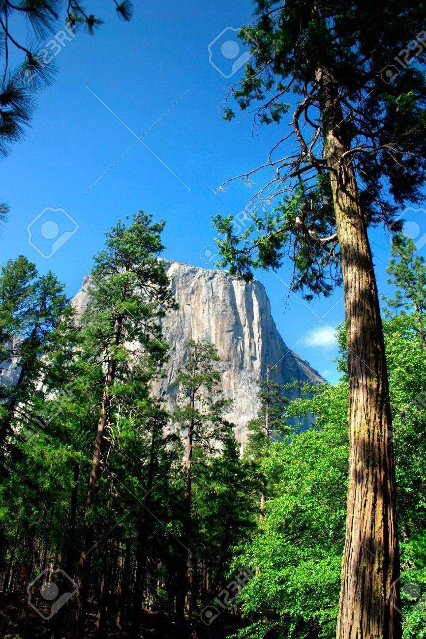 El Capitan is a 3,000 foot vertical rock formation in Yosemite Valley and Yosemite National Park. It is one of the most popular monoliths with rock climbers in the world. Stock Photo - 614214