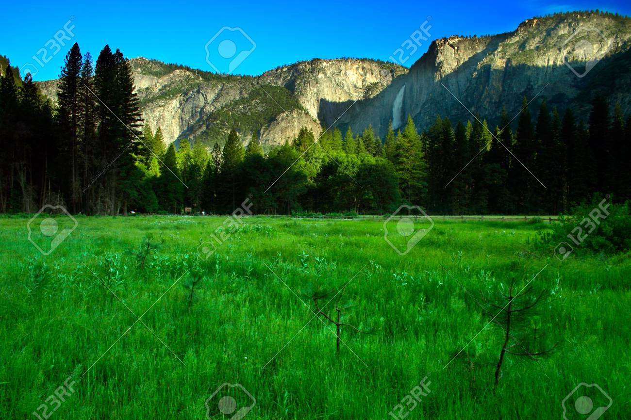 The Yosemite Valley in Yosemite National Park, California Stock Photo - 614194