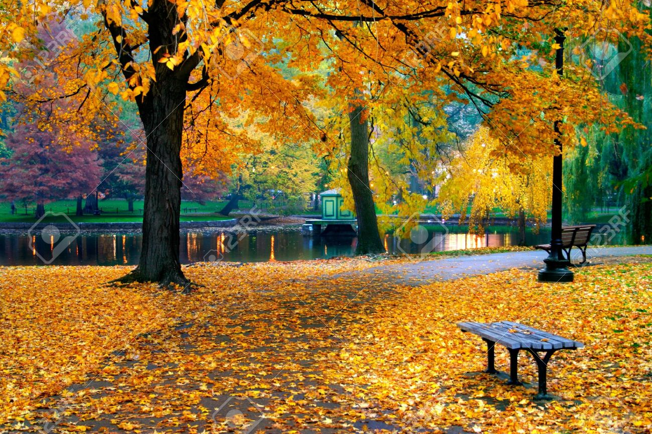 Autumn in Boston Public Garden, Massachusetts, USA Standard-Bild - 622583