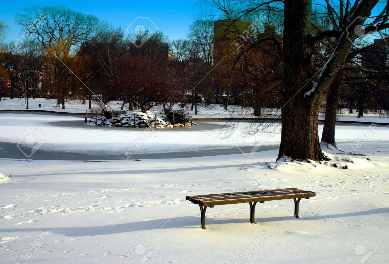 boston public garden in snow usa stock photo picture and royalty