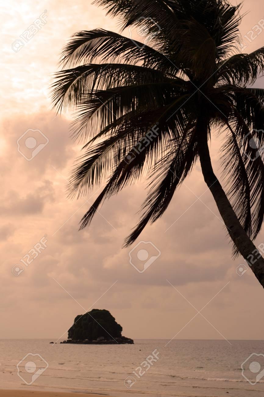 Tioman island, Malaysia Stock Photo - 8264866