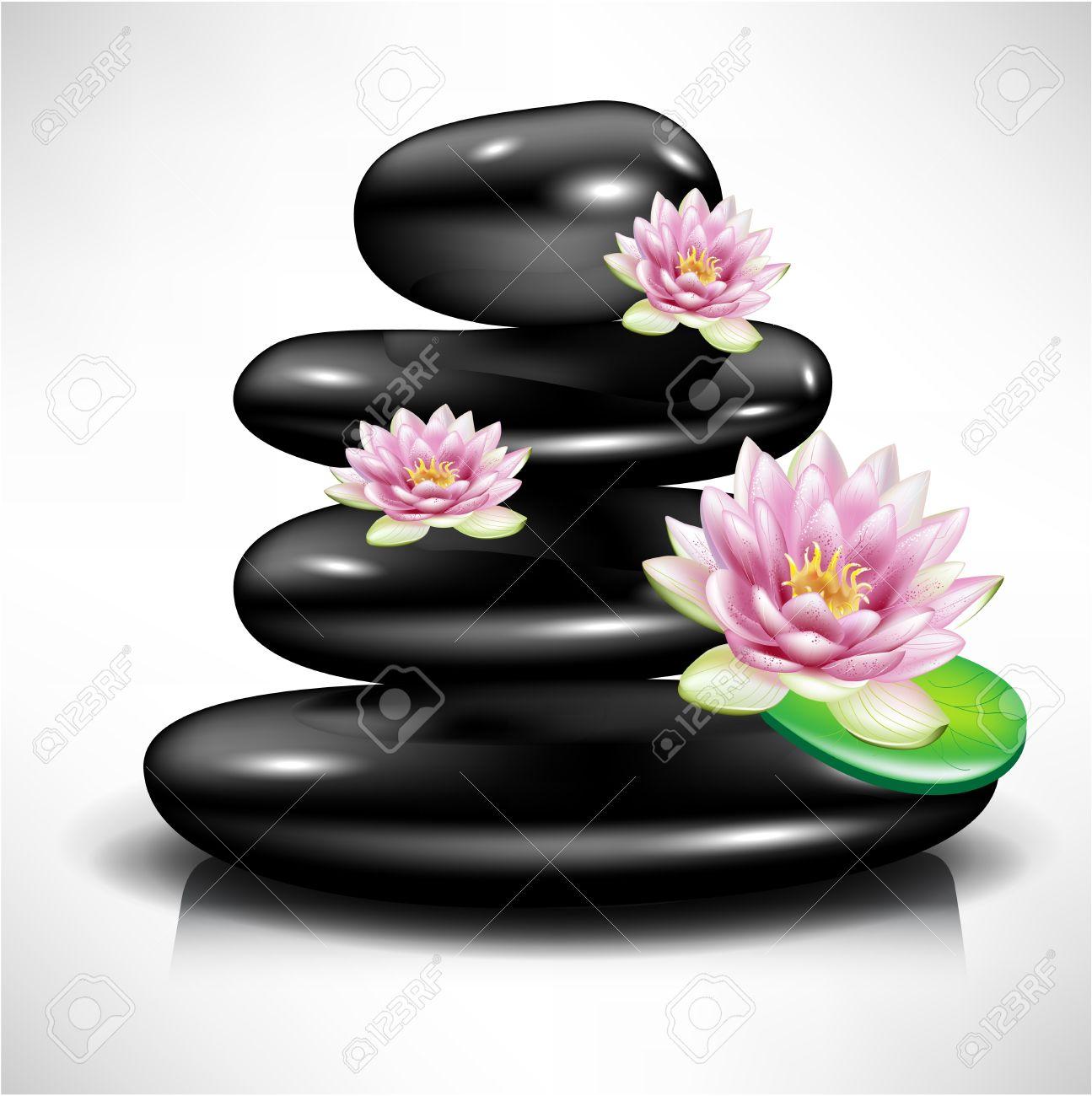 Single spa stonepebble with lotus flowers royalty free cliparts single spa stonepebble with lotus flowers stock vector 10959853 izmirmasajfo Gallery