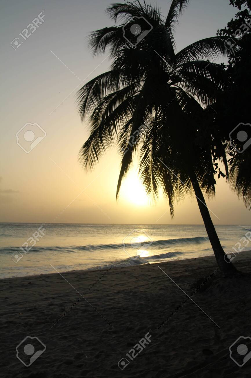 Sunset on a Barbados beach. - 141413115
