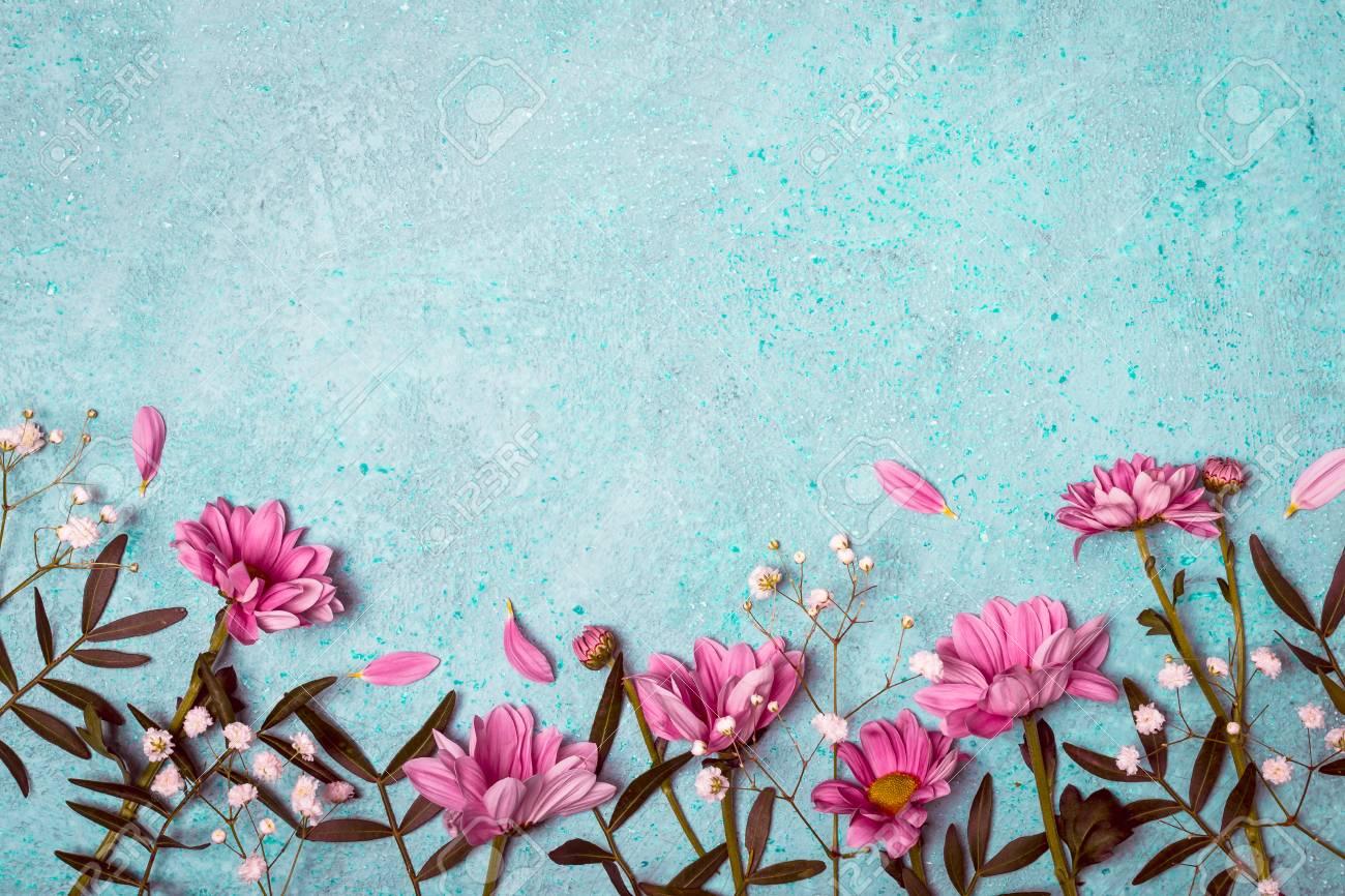 Spring Summer Creative Nature Background Pink Flowers Border