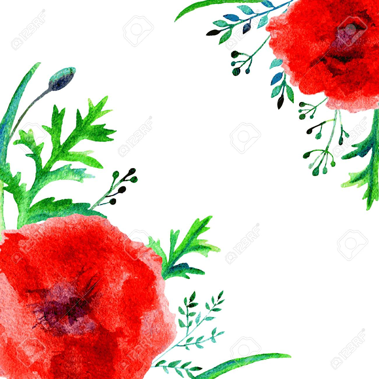 Watercolor Poppy Flower Isolated On A White Background. Can Be ...