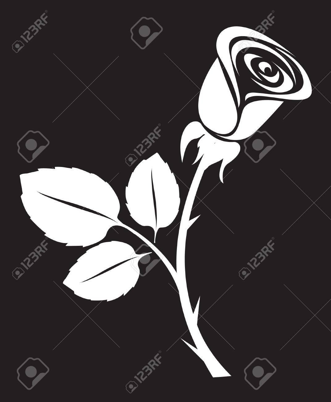 vector rose art illustration Stock Vector - 8657512