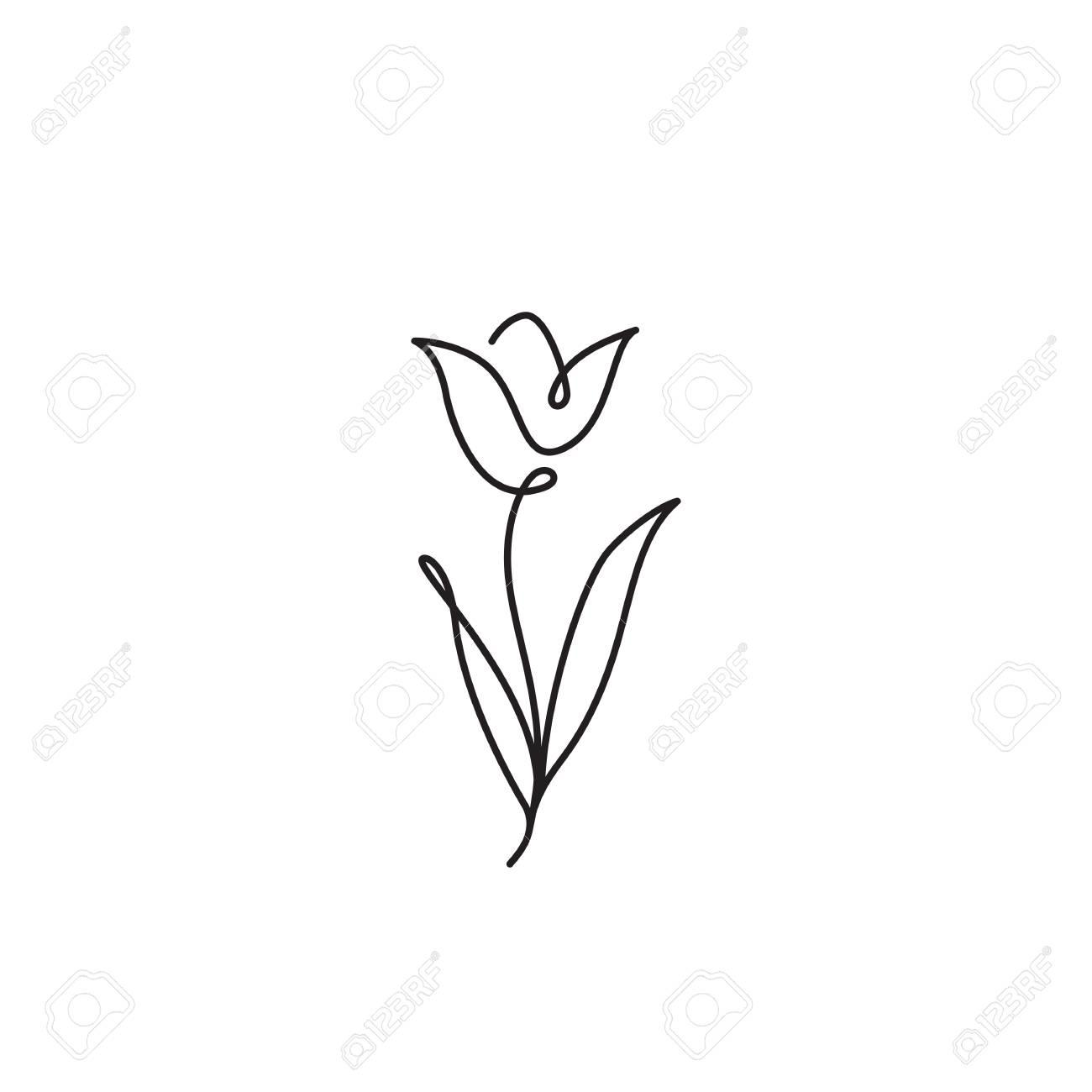 Tulip Flower Line Art Minimalist Contour Drawing One Line