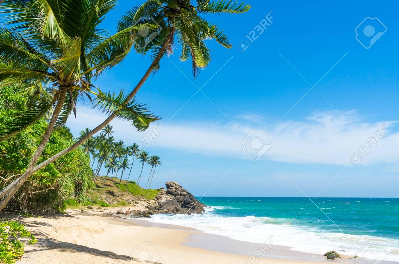 Tropical beach in Sri Lanka - 87327509
