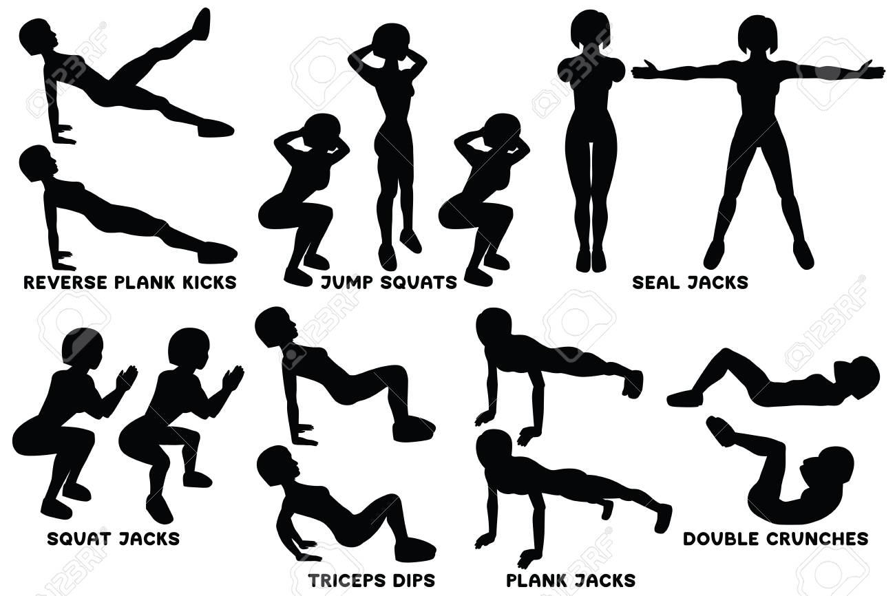 Reverse plank kicks  Reverse plank  Jump squats  Squat  Seal