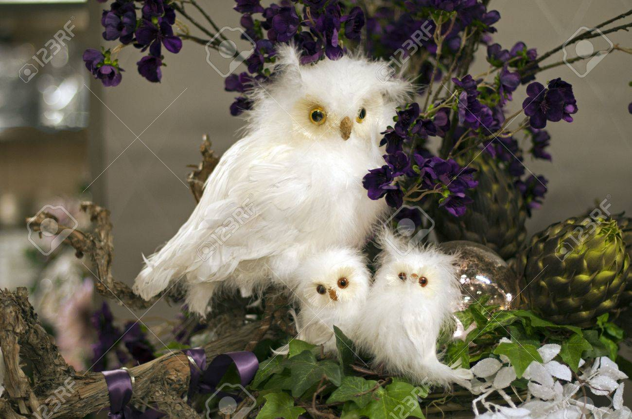 Imitation Schnee Eule Als Dekoration Vogel Lizenzfreie Fotos Bilder