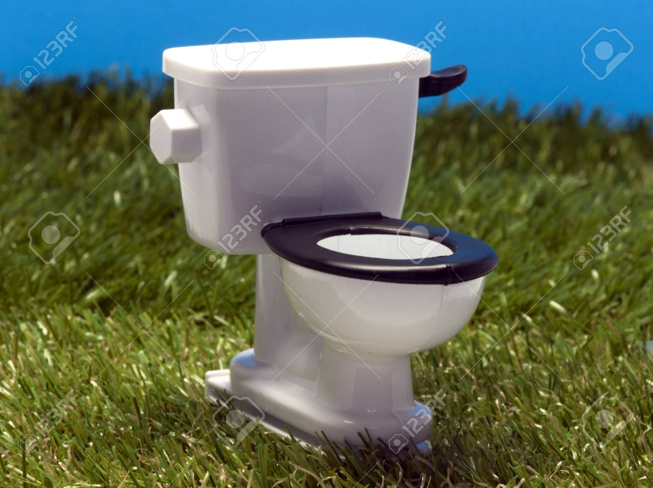 outside white toilet in the grass Stock Photo - 14382488