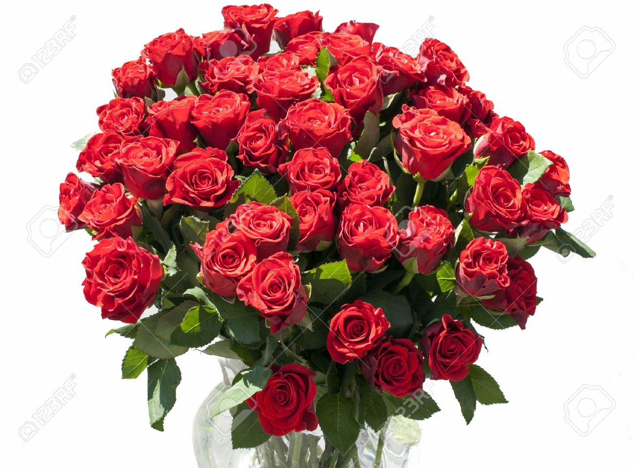 vase with red roses with sunlight on the flowers Stock Photo - 14665770