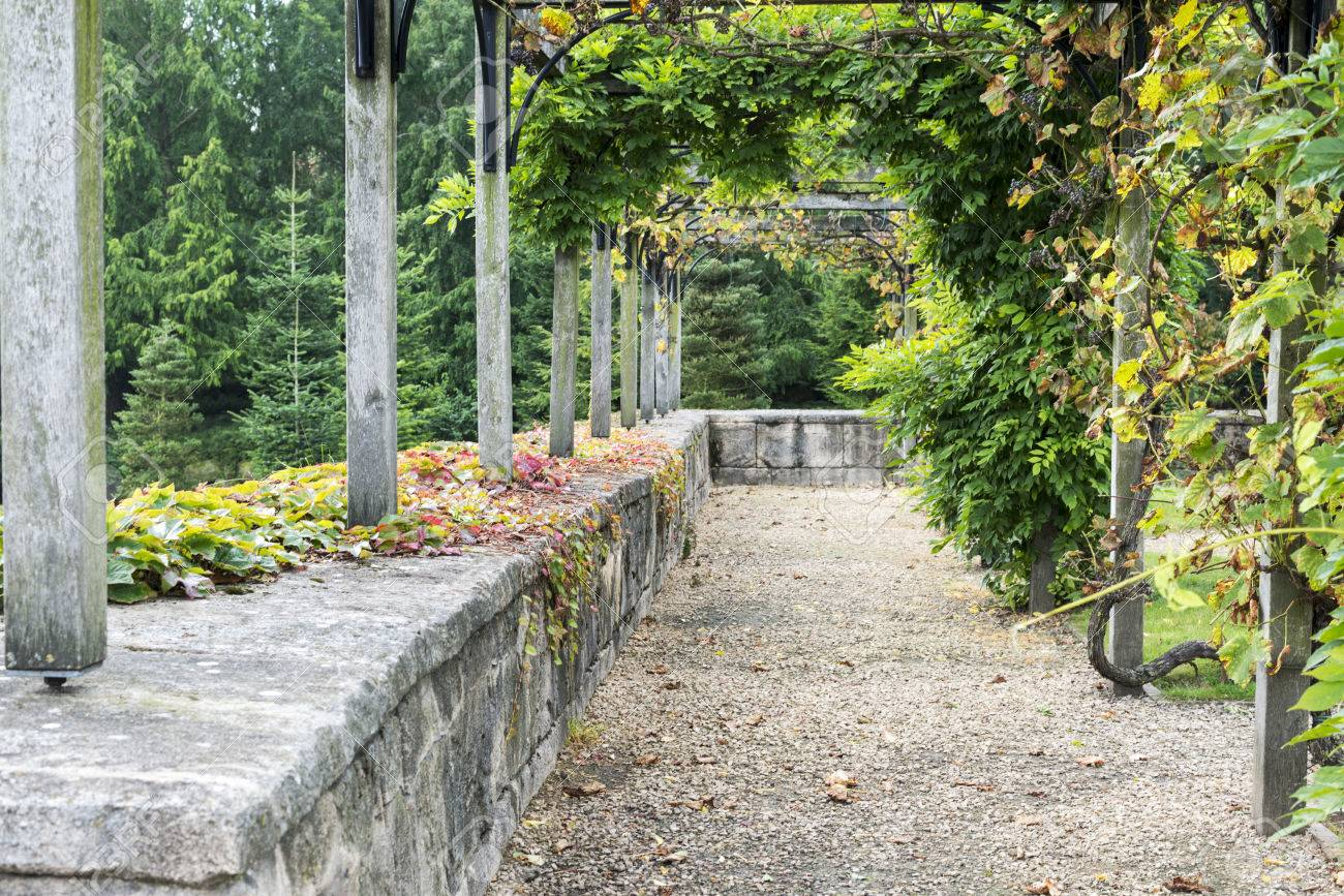 English Garden In Autumn With Plants Pergola And Rock To Sit Stock Photo    33295786