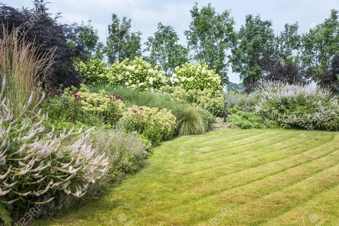 Immagini Di Piante E Alberi grande giardino inglese giardino con alberi di piante e fiori in estate